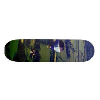 Hotair Ballon And View Skateboards