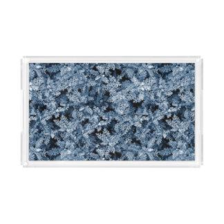 hoto pattern moss plant winter style perfume tray
