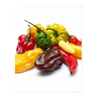 Hottest chilies postcard