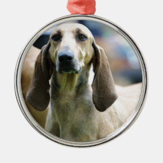 hound Italian short-haired Silver-Colored Round Ornament