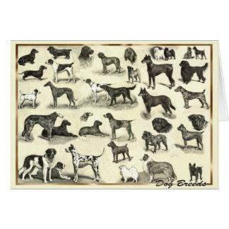 Hounds - Dog Breeds for Dog lovers canine hound Card