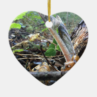 Hound's Tongue Sproutling Ceramic Heart Ornament