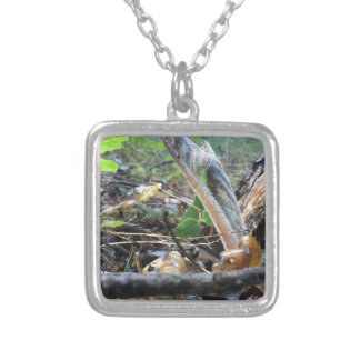 Hound's Tongue Sproutling Silver Plated Necklace