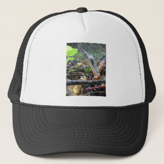 Hound's Tongue Sproutling Trucker Hat