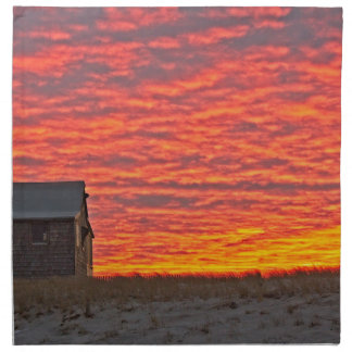 House at Sunset - 2 Napkin