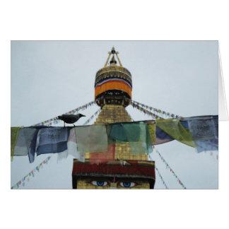 House Crow at Prayers Bodha Stupa, Nepal Card
