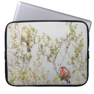 House Finch Couple Laptop Sleeve