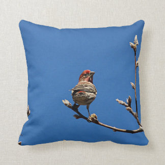 House finch on a spring day throw pillow