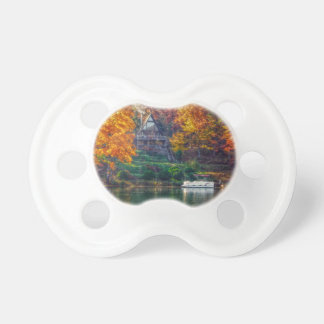 House on the Lake Pacifier