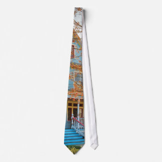 House - Painted Lady Tie