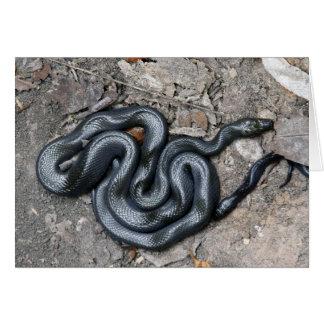House Snake Greeting Card