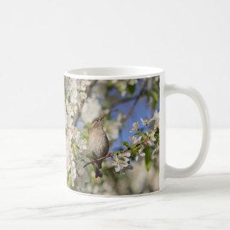 House sparrow and spring blossoms coffee mug