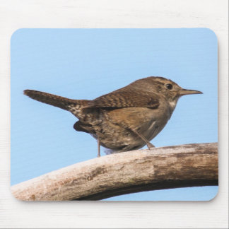 House Wren Mouse Pad