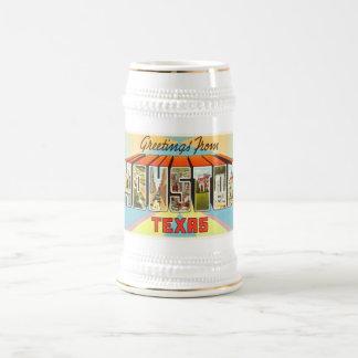 Houston Texas TX Old Vintage Travel Souvenir Beer Stein