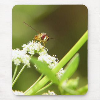Hoverfly in Celery Mouse Pad