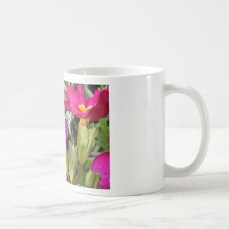 hoverfly resting coffee mug