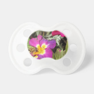 hoverfly resting pacifiers