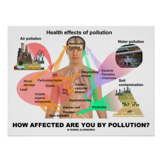 How Affected Are You By Pollution? (Physiology) Poster