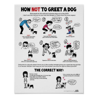 "How Not To Greet A Dog (11"" x 14"") Kid-Friendly Poster"