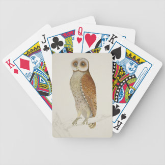 How now Bay Owl? Bicycle Playing Cards