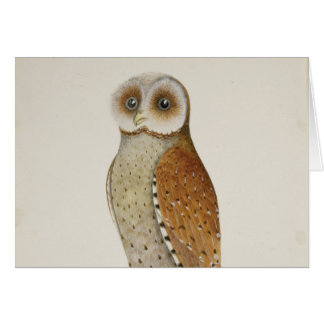 How now Bay Owl? Card