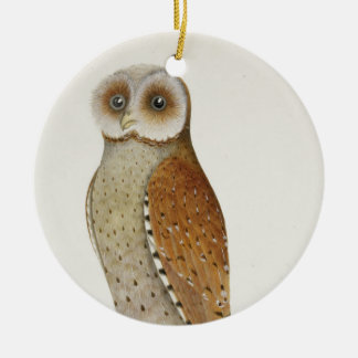 How now Bay Owl? Ceramic Ornament