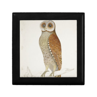 How now Bay Owl? Gift Box