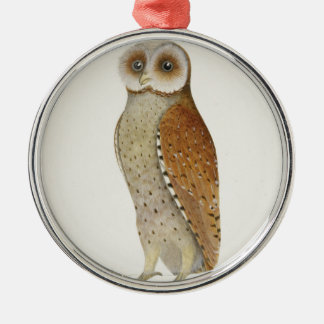 How now Bay Owl? Silver-Colored Round Ornament