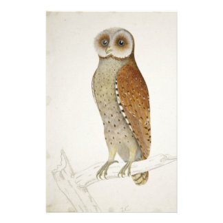 How now Bay Owl? Stationery