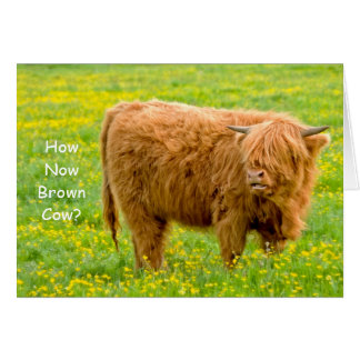 How Now Brown Cow? Birthday Card