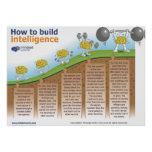 How to Build Intelligence Poster by Mindset Works