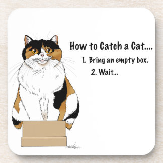How to Catch a Cat Coaster