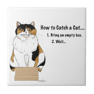 How to Catch a Cat Tile