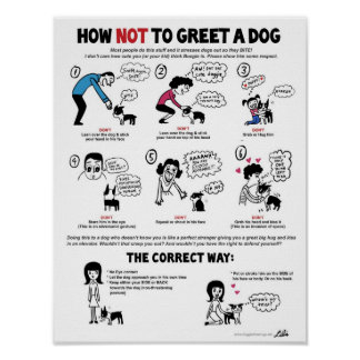 "How To Greet A Dog poster (11 x 14"") - by Lili Chi"