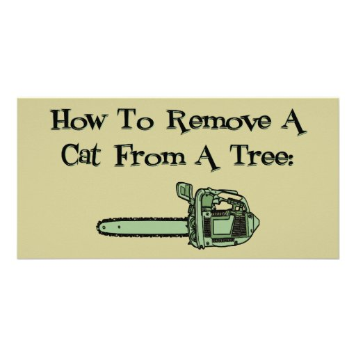 How to remove a cat from a tree photo card