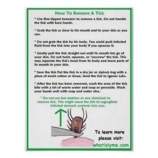 How to Remove a Tick Educational Poster