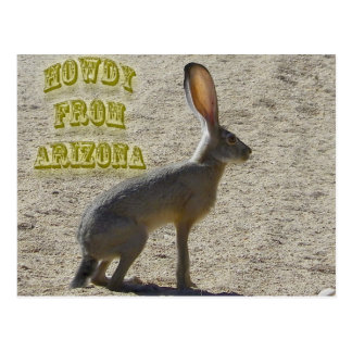 Howdy From Arizona Postcard