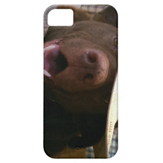 howdy iPhone 5 covers