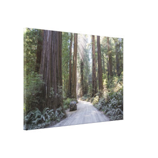 Howland Road Canvas Print