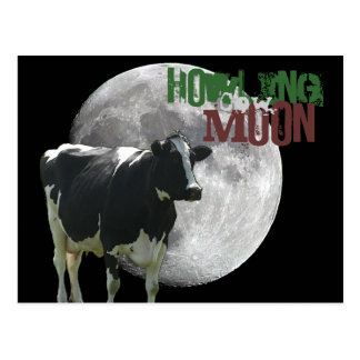 Howlin Cow Moon Postcard