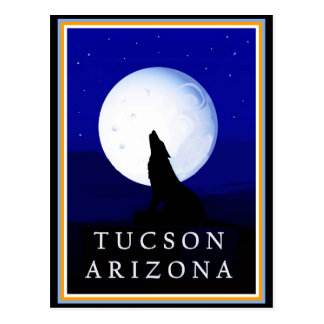 Howlin Coyote - Tucson Arizona Postcard