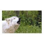 Howling timber wolf 3 business card