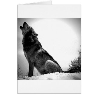 Howling Wolf in Snow Card