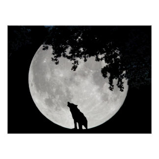 Howling Wolf Moon and Branches Poster