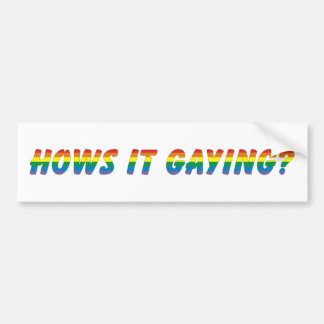 hows it gaying bumper sticker