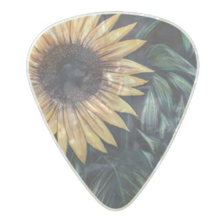 https://tinyurl.com/ydxzsku2 pearl celluloid guitar pick