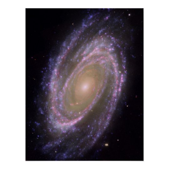 Hubble - Galex - Spitzer Composite Image of M81 Poster