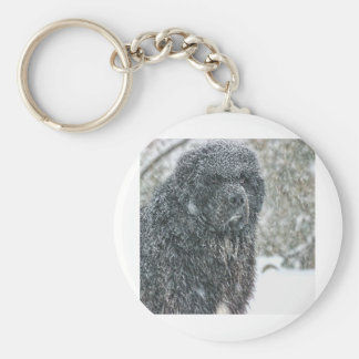 Hudson in the Snow Keychain
