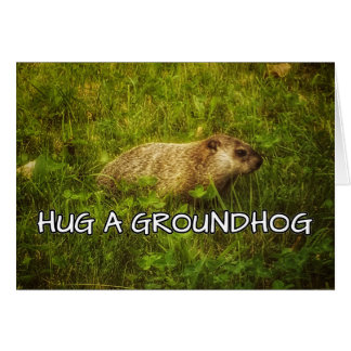 Hug a groundhog card
