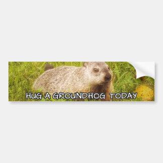 Hug a groundhog today bumper sticker